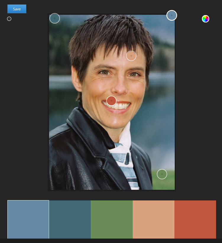 This is the palette created from my photo.