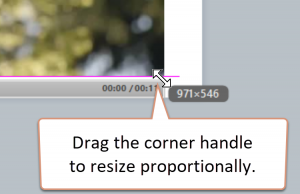 Drag the corner handle of the video to resize it proportionally.
